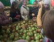 Мандрівка зі смаком яблук