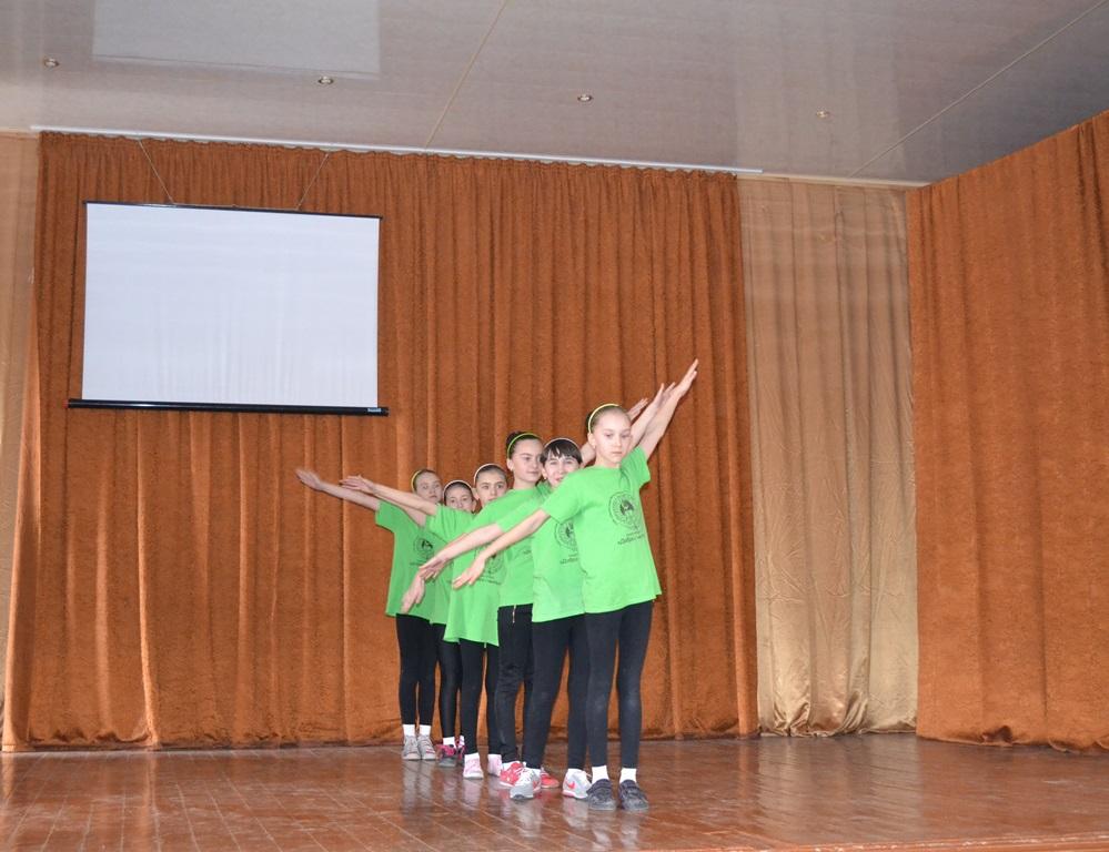 Шкільний фестиваль із спортивної аеробіки
